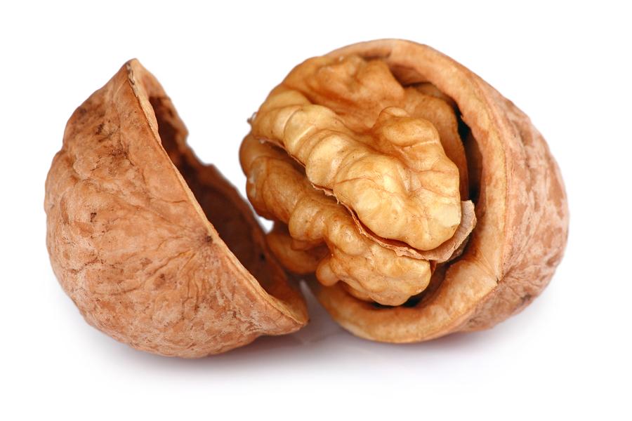 The male g-spot looks sort of like a walnut